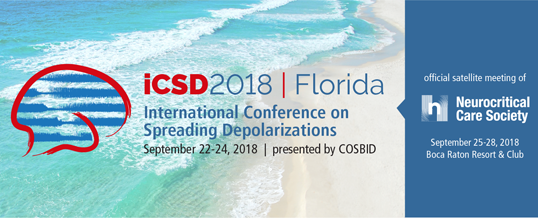 Call For Abstracts – iCSD2018 Meeting